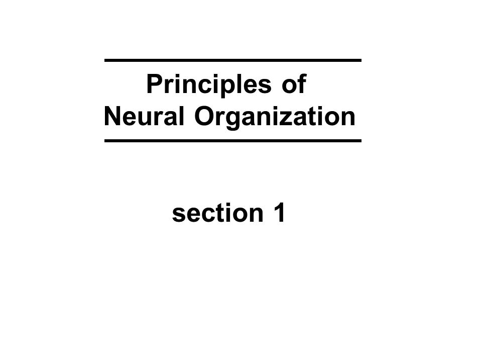 Principles of Neural Organization section 1