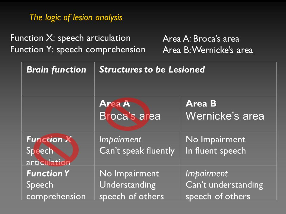 Brain functionStructures to be Lesioned Area A Broca's area Area B Wernicke's area Function X Speech articulation Impairment Can't speak fluently No Impairment In fluent speech Function Y Speech comprehension No Impairment Understanding speech of others Impairment Can't understanding speech of others Function X: speech articulation Function Y: speech comprehension Area A: Broca's area Area B: Wernicke's area