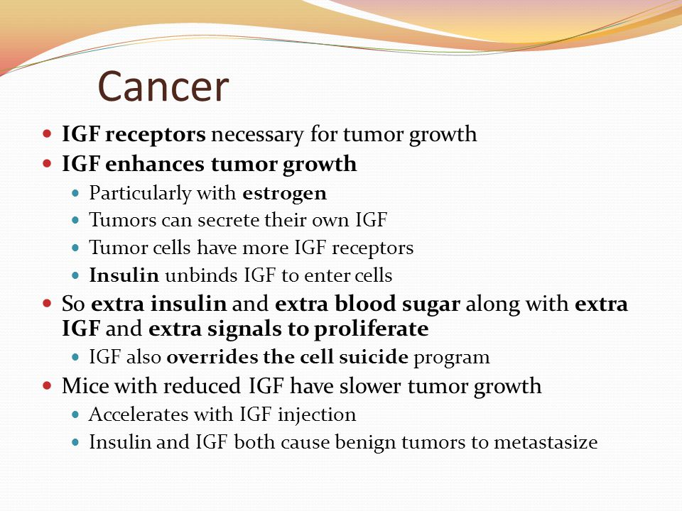 Cancer IGF receptors necessary for tumor growth IGF enhances tumor growth Particularly with estrogen Tumors can secrete their own IGF Tumor cells have more IGF receptors Insulin unbinds IGF to enter cells So extra insulin and extra blood sugar along with extra IGF and extra signals to proliferate IGF also overrides the cell suicide program Mice with reduced IGF have slower tumor growth Accelerates with IGF injection Insulin and IGF both cause benign tumors to metastasize