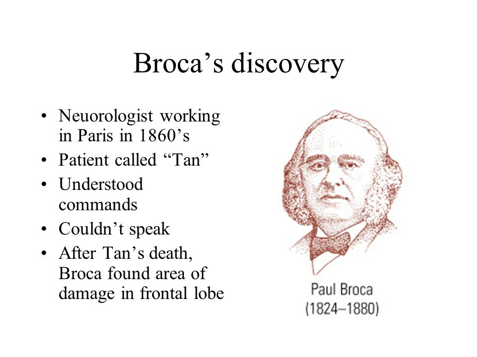 Broca's discovery Neuorologist working in Paris in 1860's Patient called Tan Understood commands Couldn't speak After Tan's death, Broca found area of damage in frontal lobe