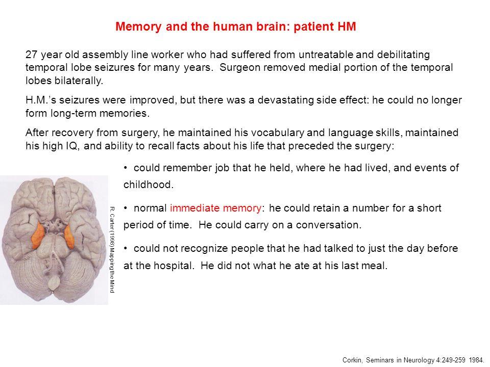 Immediate memory is intact in amnesia.