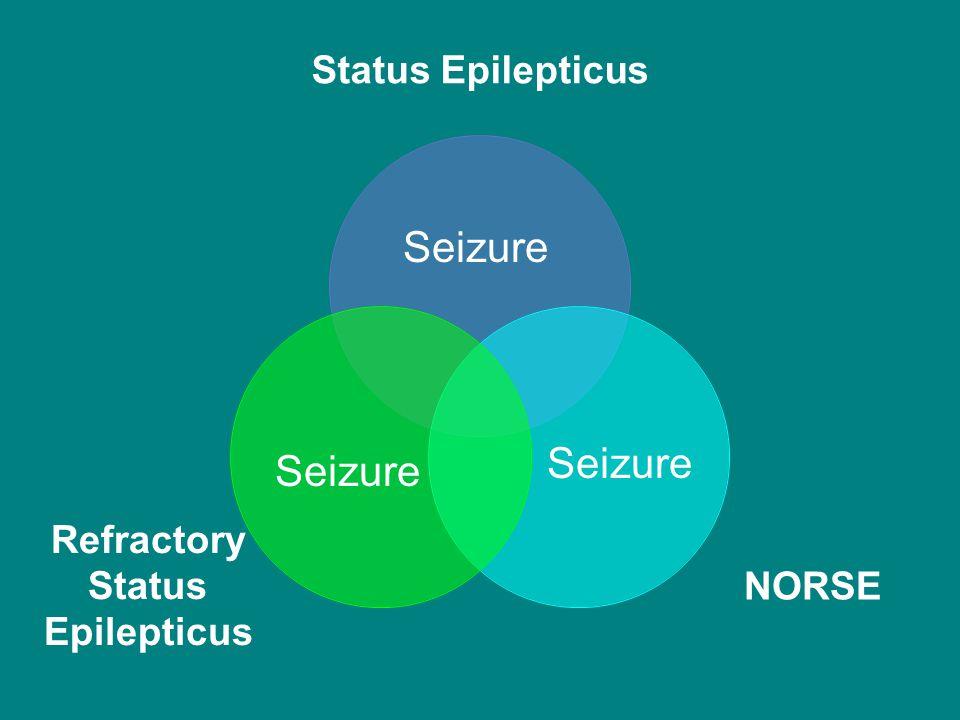 Status Epilepticus NORSE Refractory Status Epilepticus Seizure