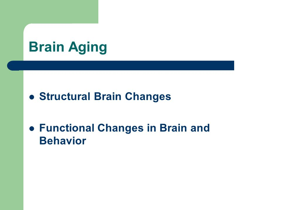 Brain Aging Structural Brain Changes Functional Changes in Brain and Behavior