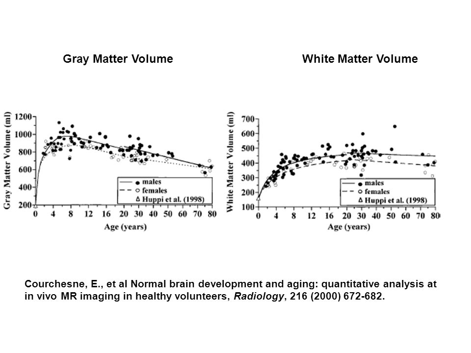 Courchesne, E., et al Normal brain development and aging: quantitative analysis at in vivo MR imaging in healthy volunteers, Radiology, 216 (2000) 672-682.