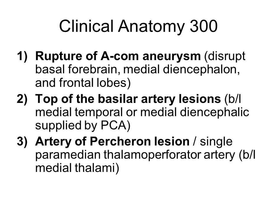 Clinical Anatomy 300 1)Rupture of A-com aneurysm (disrupt basal forebrain, medial diencephalon, and frontal lobes) 2)Top of the basilar artery lesions (b/l medial temporal or medial diencephalic supplied by PCA) 3)Artery of Percheron lesion / single paramedian thalamoperforator artery (b/l medial thalami)