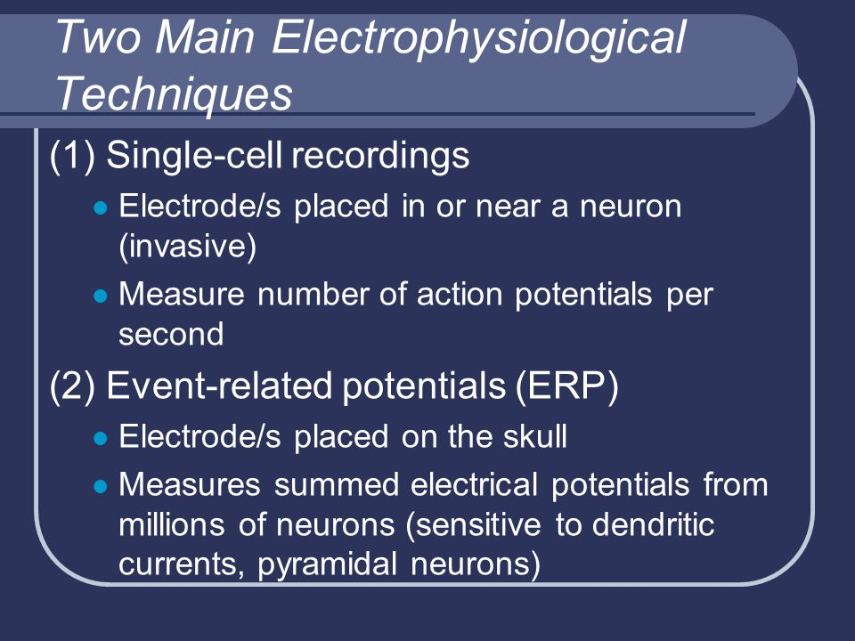 Two Main Electrophysiological Techniques (1) Single-cell recordings Electrode/s placed in or near a neuron (invasive) Measure number of action potentials per second (2) Event-related potentials (ERP) Electrode/s placed on the skull Measures summed electrical potentials from millions of neurons (sensitive to dendritic currents, pyramidal neurons)
