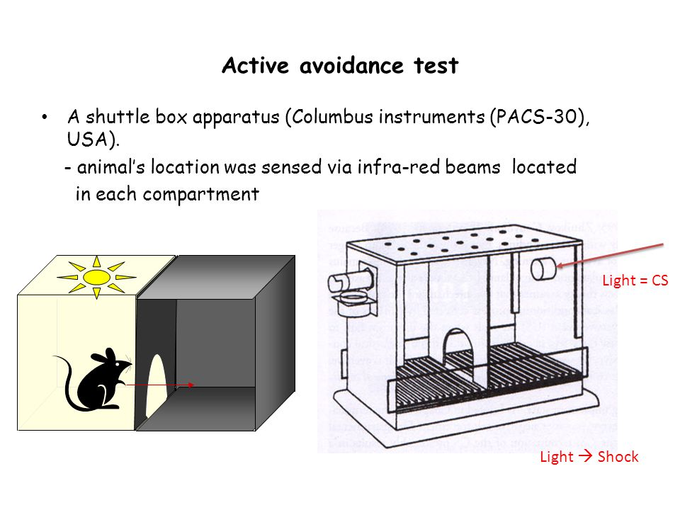 Active avoidance test A shuttle box apparatus (Columbus instruments (PACS-30), USA).