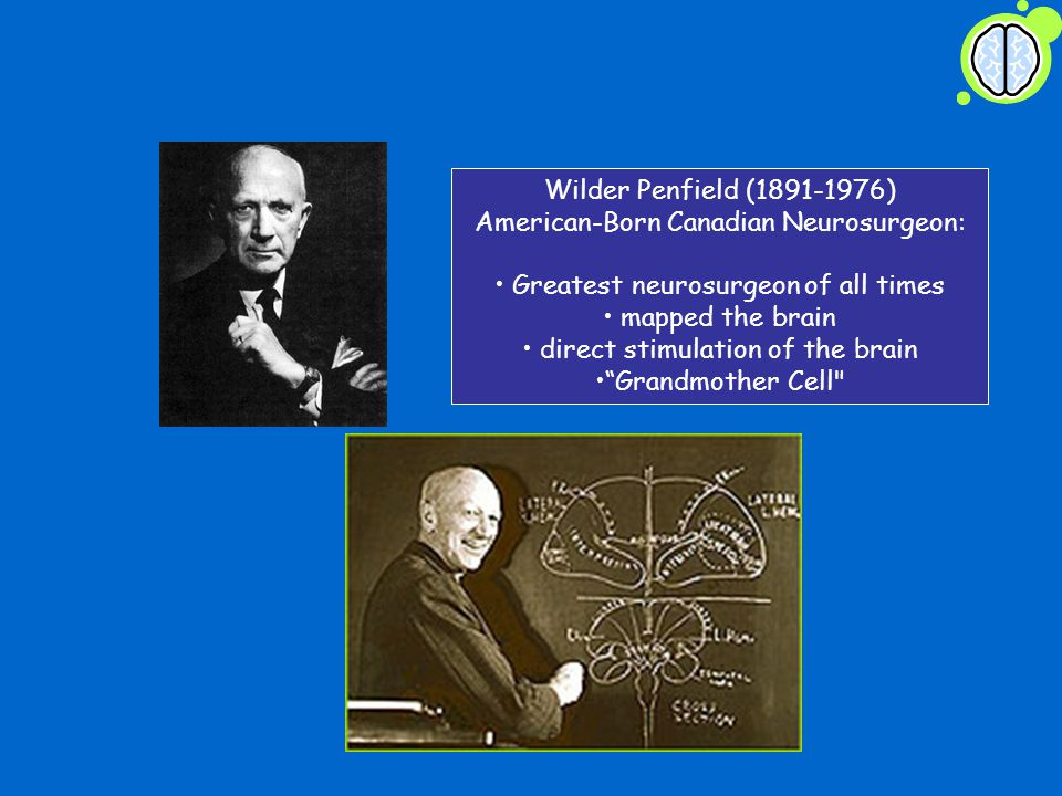 Wilder Penfield (1891-1976) American-Born Canadian Neurosurgeon: Greatest neurosurgeon of all times mapped the brain direct stimulation of the brain Grandmother Cell