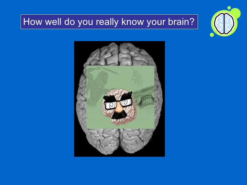 How well do you really know your brain