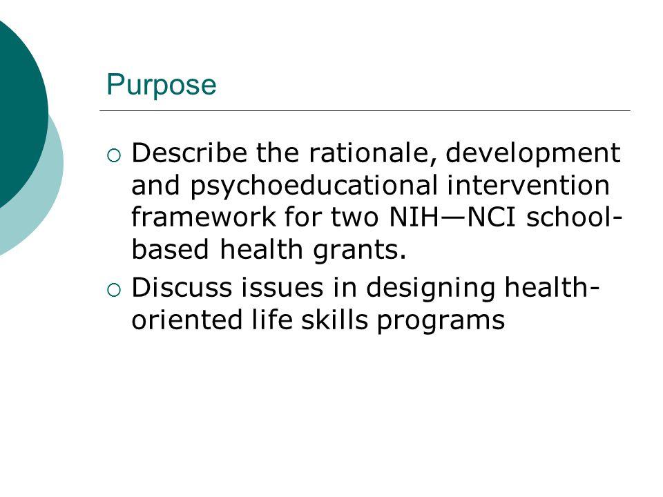 Life Development Intervention (LDI) as a Framework  LDI is based on life-span developmental theory.