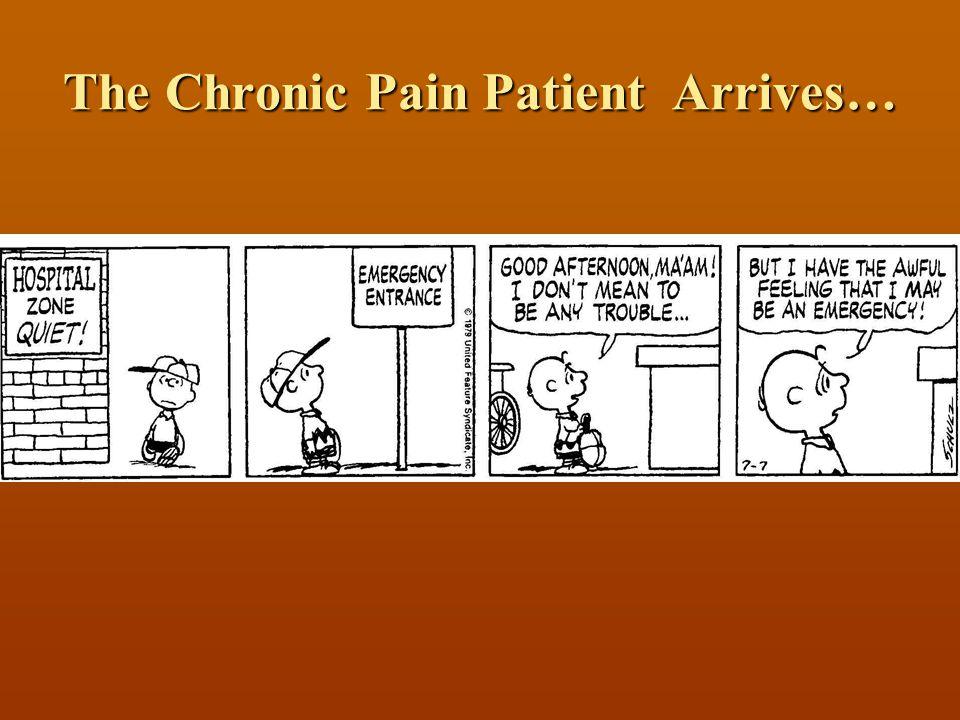 Disclosure 2006 Pfizer Pain Visiting professorship 2006 Pfizer Pain Visiting professorship No promotional activity No promotional activity
