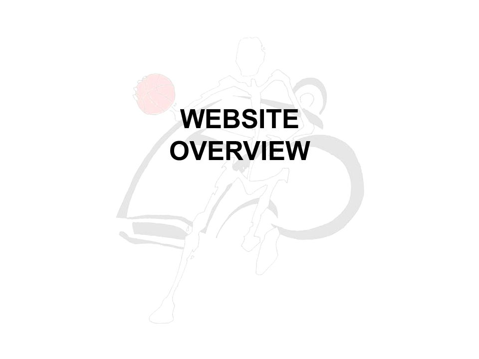 WEBSITE OVERVIEW