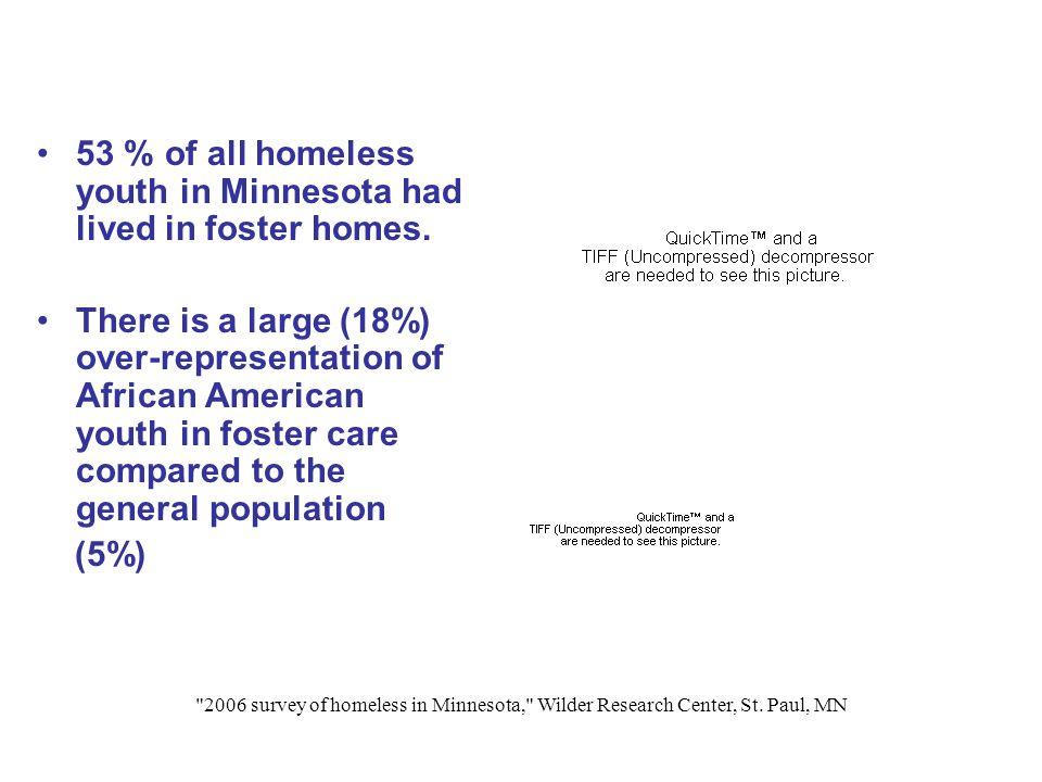 2006 survey of homeless in Minnesota, Wilder Research Center, St.