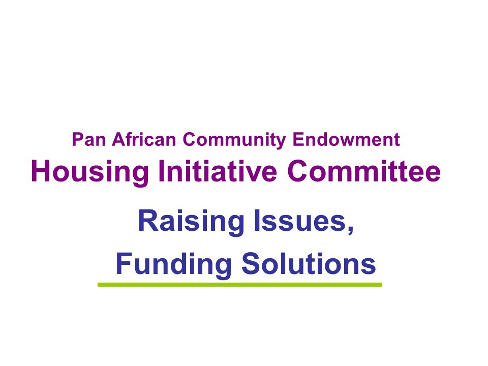 Pan African Community Endowment Housing Initiative Committee Raising Issues, Funding Solutions