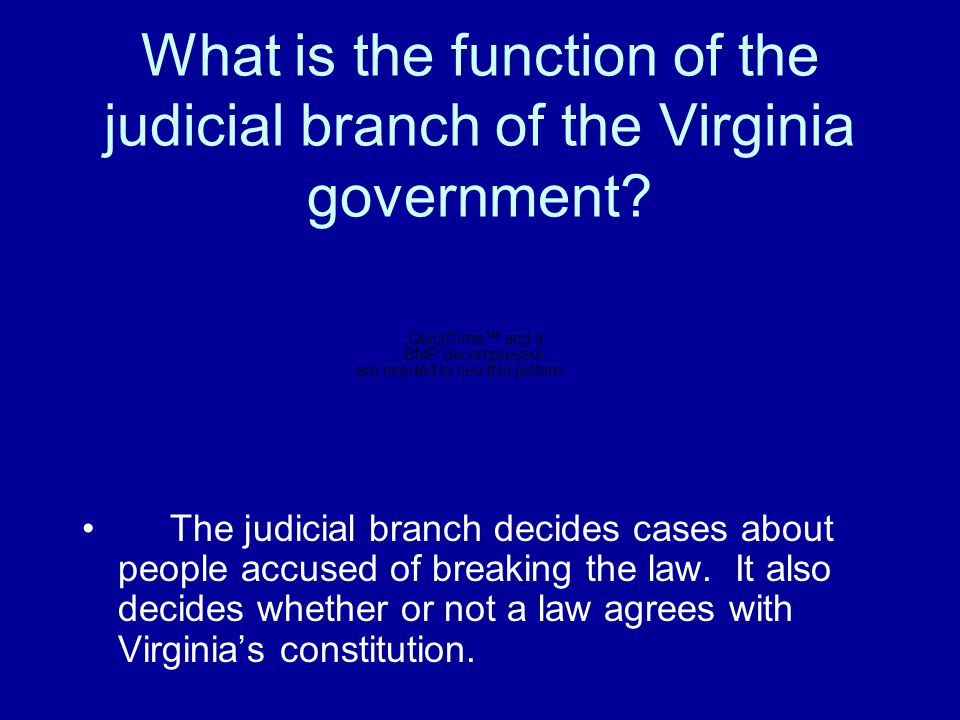 What is the function of the executive branch of the Virginia government? The executive branch makes sure that state laws are carried out. The governor