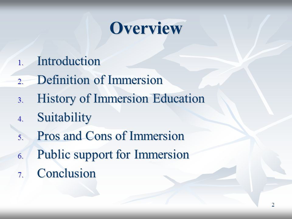 2 Overview 1. Introduction 2. Definition of Immersion 3.