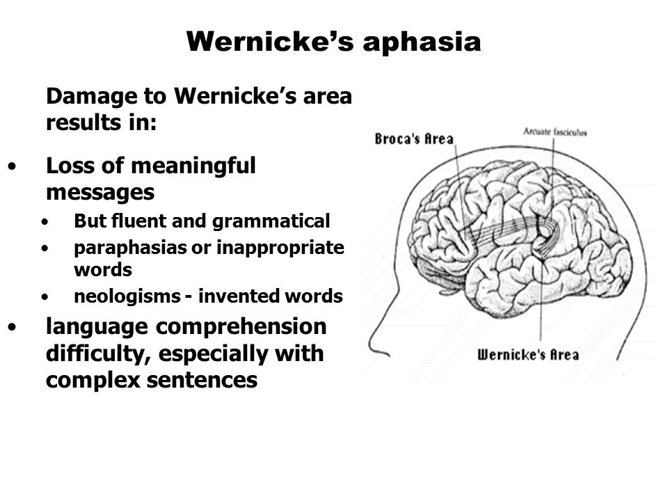 Damage to Wernicke's area results in: Loss of meaningful messages But fluent and grammatical paraphasias or inappropriate words neologisms - invented words language comprehension difficulty, especially with complex sentences Wernicke's aphasia