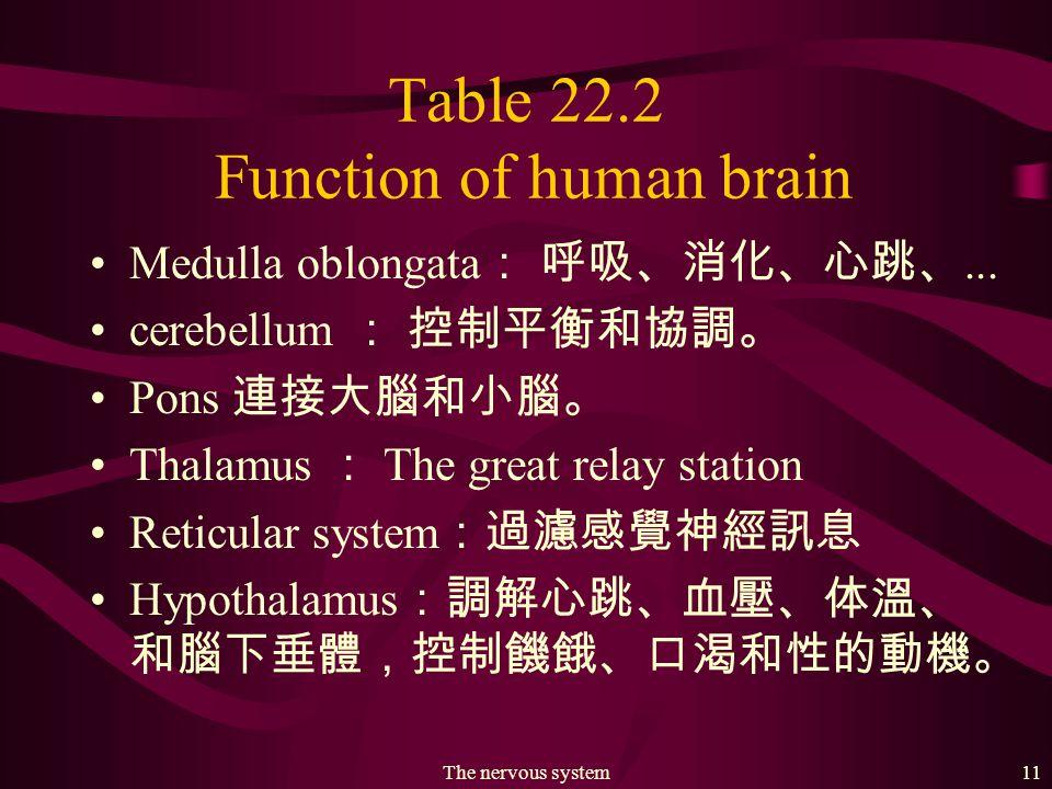 The nervous system10 Fig. 22.6 (b) Major lobes of human brain. 額葉 頂葉 枕葉 顳葉 小腦 延腦