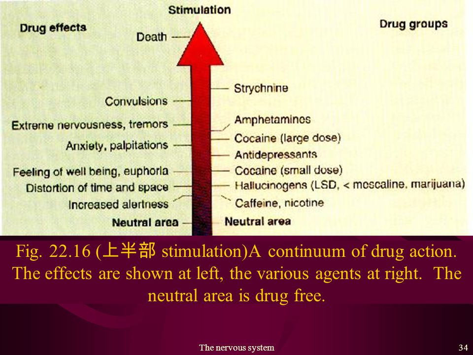 The nervous system33 Mindbenders Drugs are psychoactive agents: that is, they can alter mood, memory, attention, control, judgement, time-and space sense, emotion, and sensation.