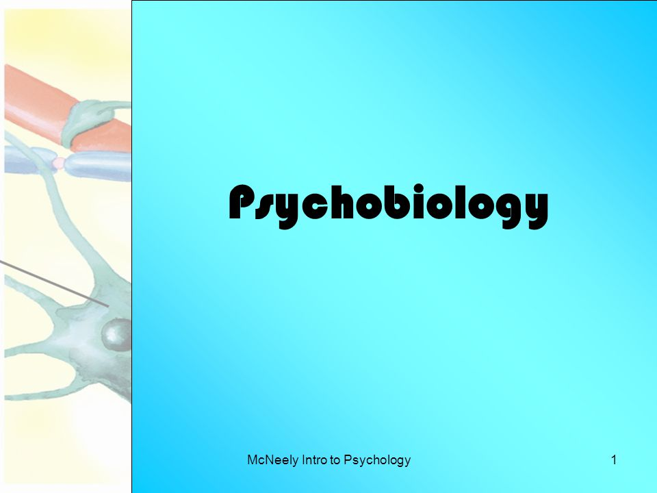McNeely Intro to Psychology1 Psychobiology