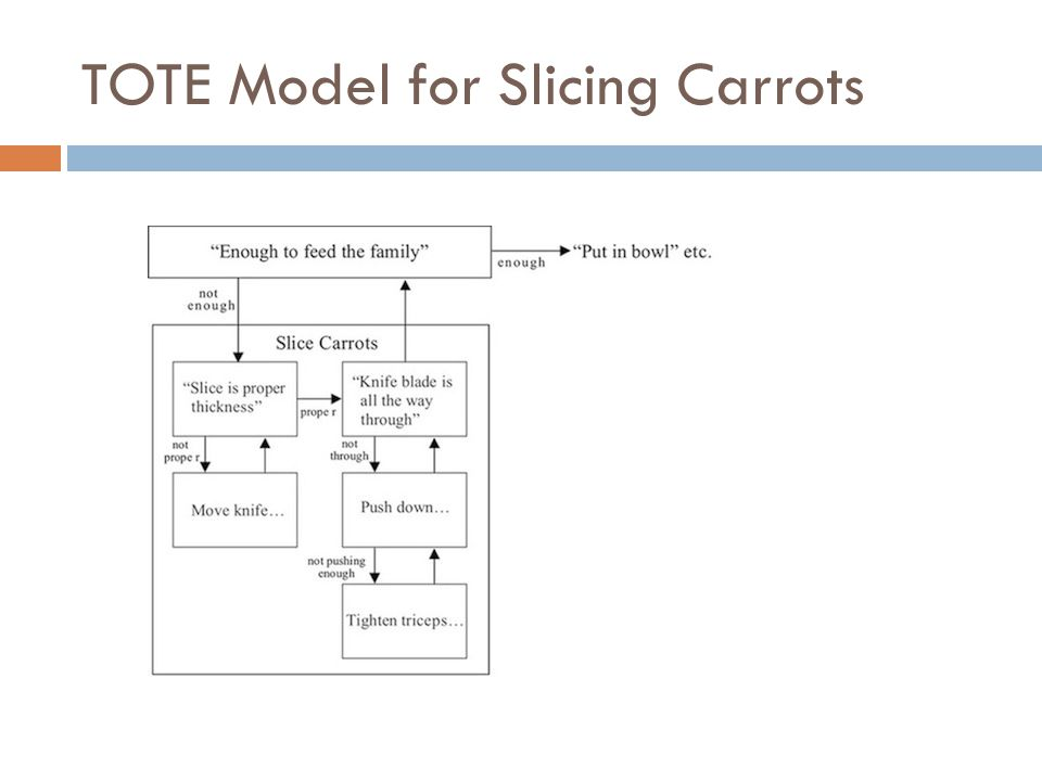TOTE Model for Slicing Carrots