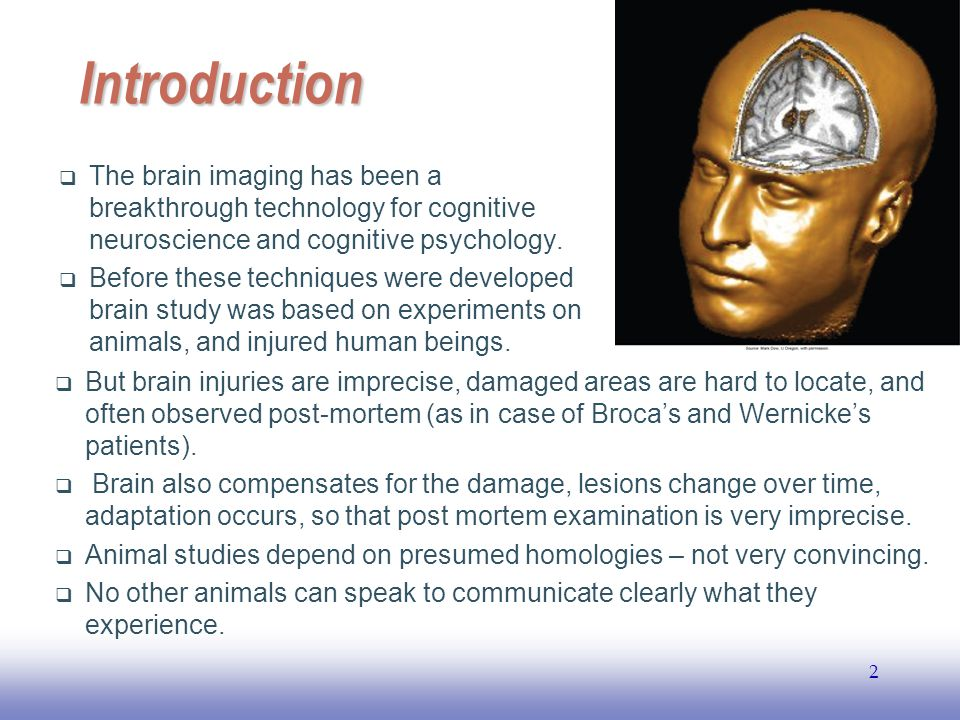 EE141 2 Introduction  The brain imaging has been a breakthrough technology for cognitive neuroscience and cognitive psychology.  Before these techni