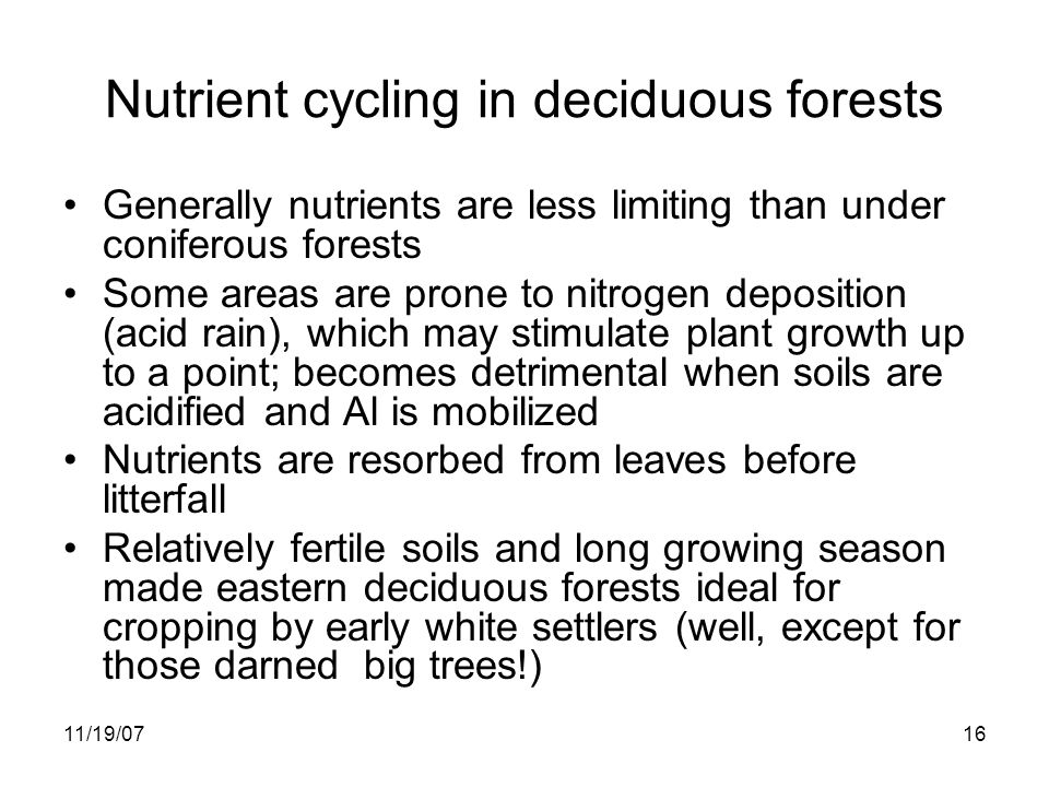 11/19/0716 Nutrient cycling in deciduous forests Generally nutrients are less limiting than under coniferous forests Some areas are prone to nitrogen deposition (acid rain), which may stimulate plant growth up to a point; becomes detrimental when soils are acidified and Al is mobilized Nutrients are resorbed from leaves before litterfall Relatively fertile soils and long growing season made eastern deciduous forests ideal for cropping by early white settlers (well, except for those darned big trees!)
