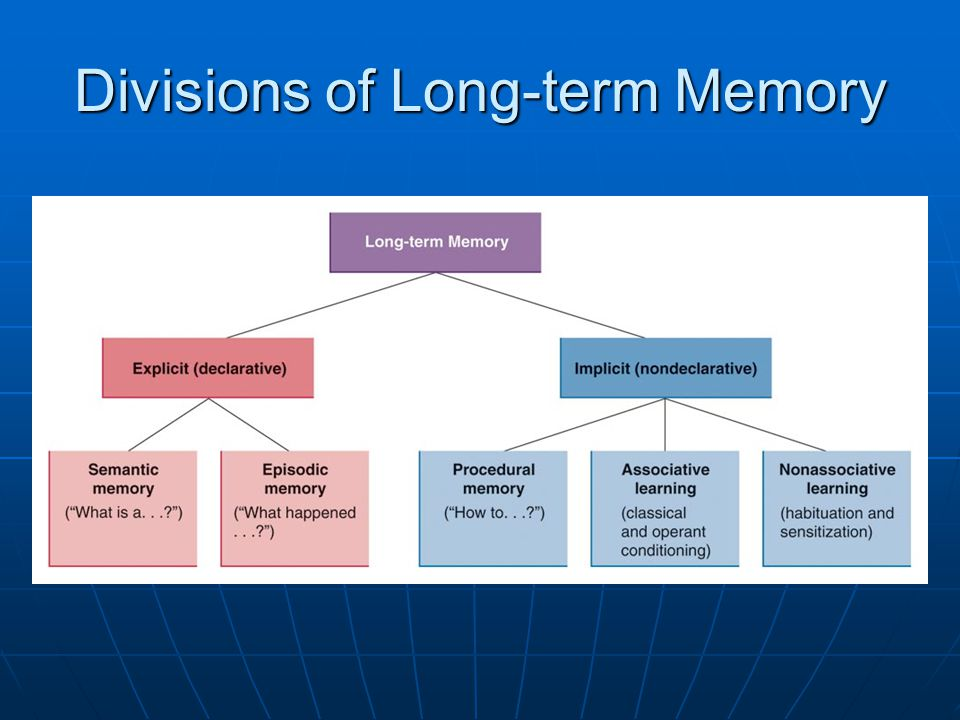 Divisions of Long-term Memory