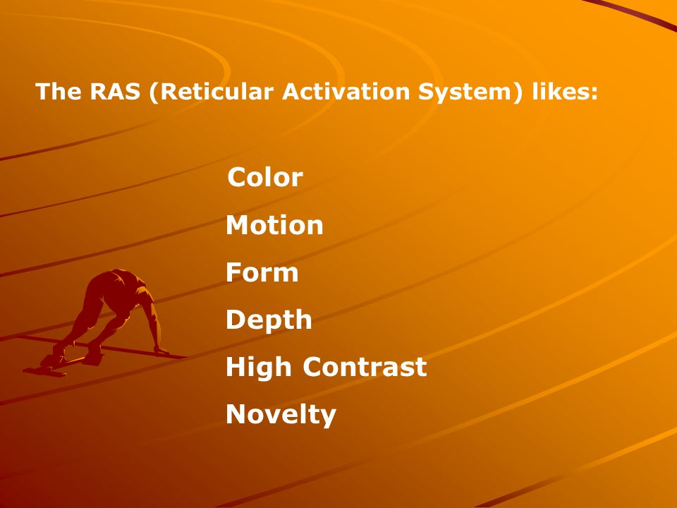 The RAS (Reticular Activation System) likes: Color Motion Form Depth High Contrast Novelty