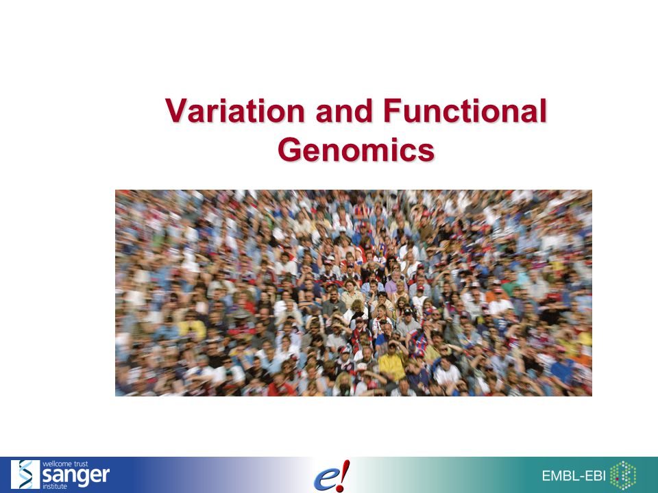 2 of 51 Overview of Talk SNPs and InDels Larger structural variants (CNVs) Phenotype data Individual genomes HapMap variations and genotypes Locus Specific Databases LRGs