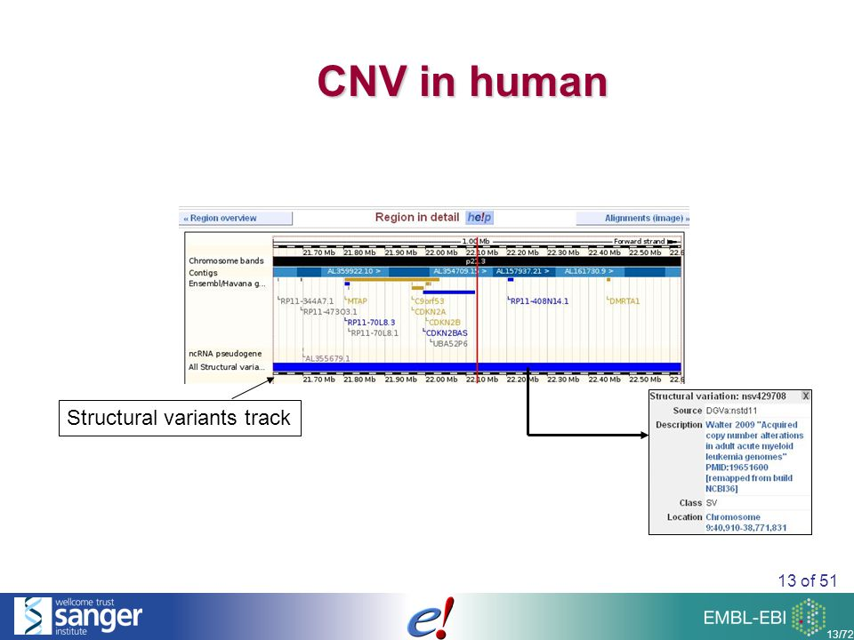 13 of 51 13/72 CNV in human Structural variants track