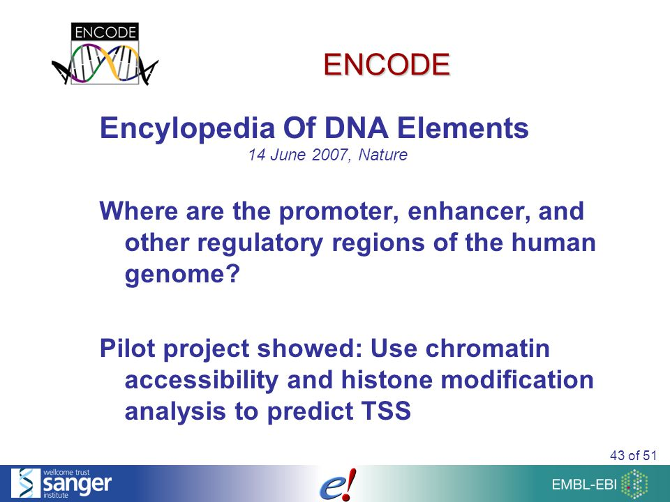 43 of 51 ENCODE Encylopedia Of DNA Elements Where are the promoter, enhancer, and other regulatory regions of the human genome.