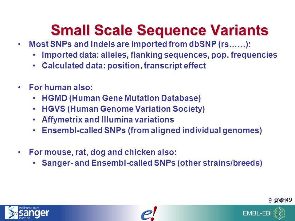 50 of 51 Gene Regulation Summary DNase I hypersensitivitiy, CTCF binding sites, TF binding sites (core features) Histone modification data MeDIP-chip methylation data for 17 human tissues and cell lines VISTA Enhancer Assay (http://enhancer.lbl.gov)http://enhancer.lbl.gov cisRED motifs (www.cisred.org)www.cisred.org miRanda microRNA target prediction Expression Quantitative Trait Loci (eQTL) from the Sanger Institute DNase1 Hypersensititvity site (ES cells) Histone modifications for ES, MEF, and NPC cells cisRED motifs (www.cisred.org)www.cisred.org ZFMODELS-enhancers REDfly TFBSs BioTIFFIN REDfly CRMs Homo sapiens Mus musculus Danio rerio Drosophila melanogaster