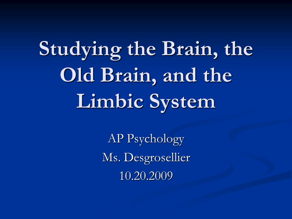 Studying the Brain, the Old Brain, and the Limbic System AP Psychology Ms. Desgrosellier 10.20.2009