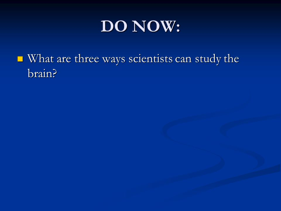 DO NOW: What are three ways scientists can study the brain.