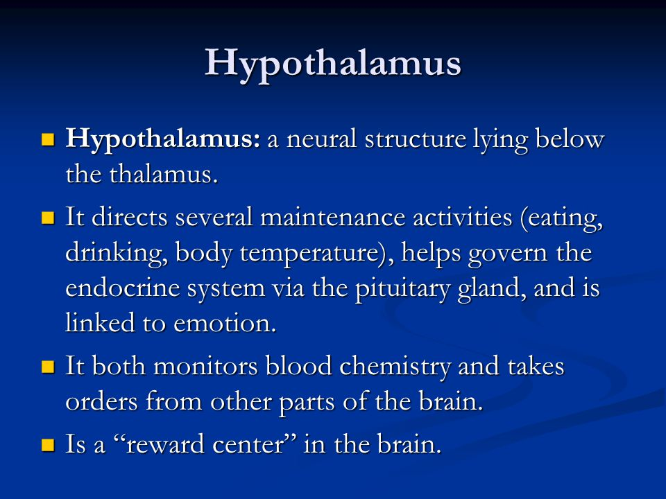 Hypothalamus Hypothalamus: a neural structure lying below the thalamus.