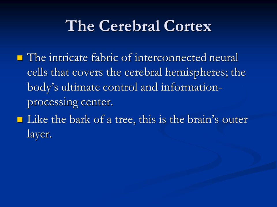 The Cerebral Cortex The intricate fabric of interconnected neural cells that covers the cerebral hemispheres; the body's ultimate control and information- processing center.