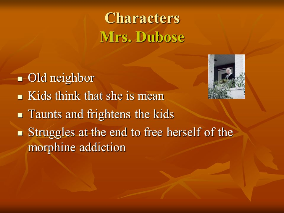 Characters Mrs. Dubose Old neighbor Old neighbor Kids think that she is mean Kids think that she is mean Taunts and frightens the kids Taunts and frig