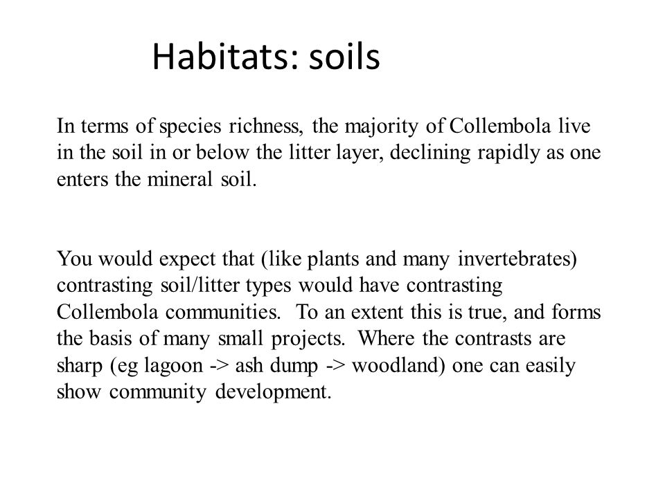 Habitats: soils In terms of species richness, the majority of Collembola live in the soil in or below the litter layer, declining rapidly as one enters the mineral soil.