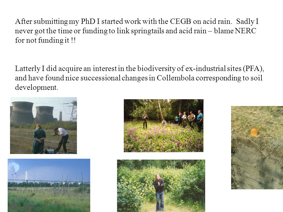 After submitting my PhD I started work with the CEGB on acid rain.
