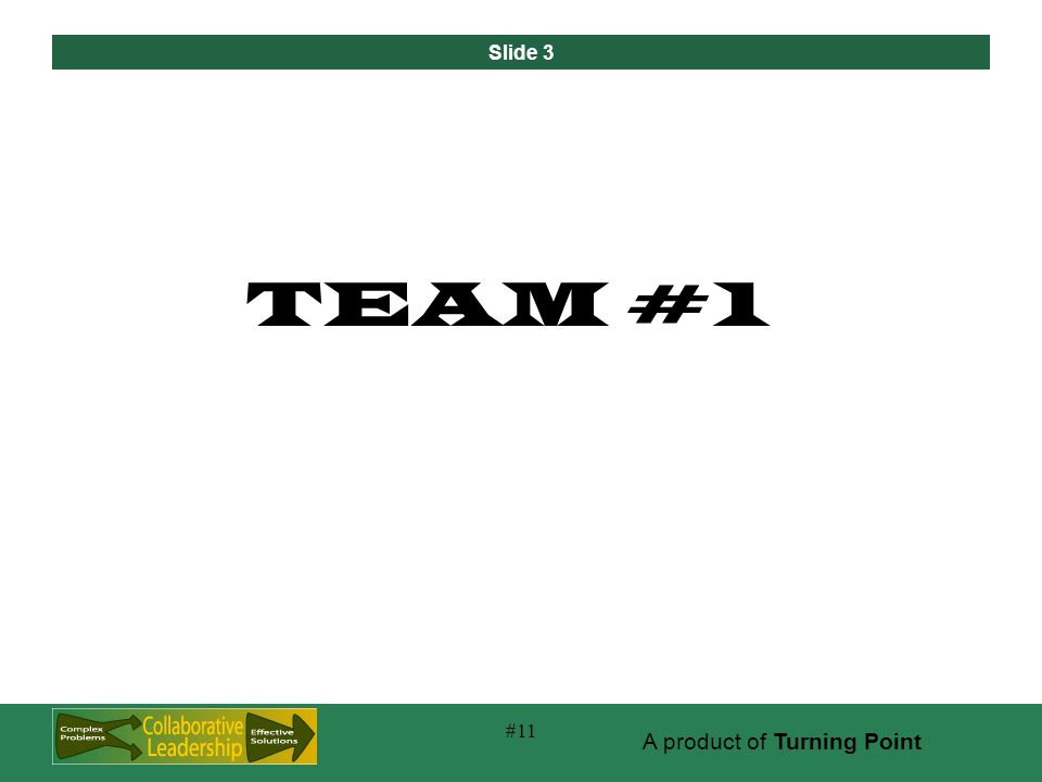 Slide 3 A product of Turning Point #11 TEAM #1