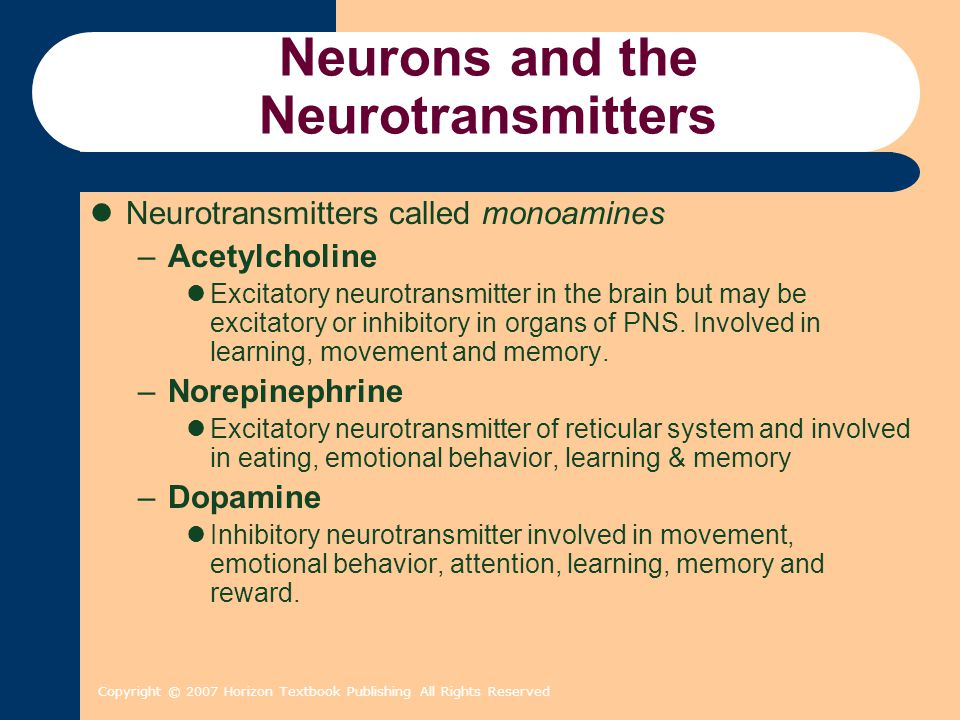 Copyright © 2007 Horizon Textbook Publishing All Rights Reserved Neurons and the Neurotransmitters Neurotransmitters called monoamines –Acetylcholine Excitatory neurotransmitter in the brain but may be excitatory or inhibitory in organs of PNS.