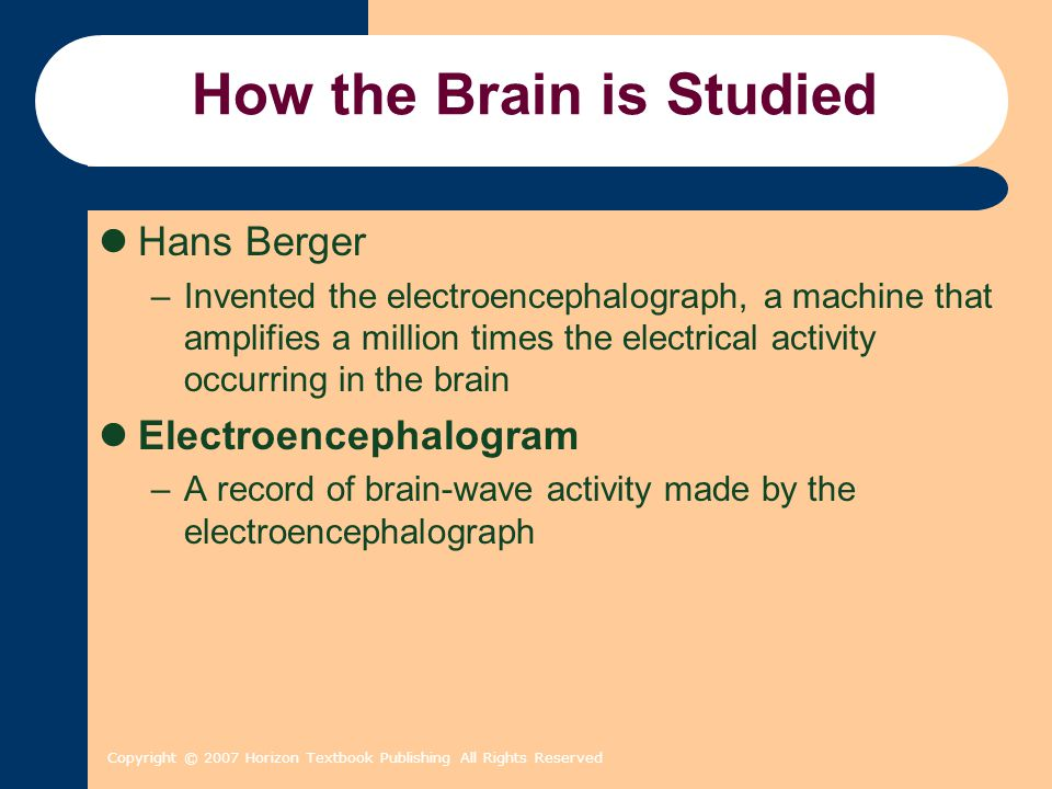 Copyright © 2007 Horizon Textbook Publishing All Rights Reserved How the Brain is Studied Hans Berger –Invented the electroencephalograph, a machine that amplifies a million times the electrical activity occurring in the brain Electroencephalogram –A record of brain-wave activity made by the electroencephalograph