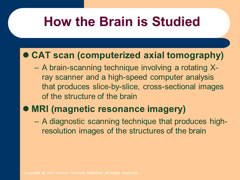Copyright © 2007 Horizon Textbook Publishing All Rights Reserved How the Brain is Studied CAT scan (computerized axial tomography) –A brain-scanning technique involving a rotating X- ray scanner and a high-speed computer analysis that produces slice-by-slice, cross-sectional images of the structure of the brain MRI (magnetic resonance imagery) –A diagnostic scanning technique that produces high- resolution images of the structures of the brain