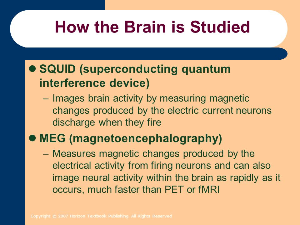 Copyright © 2007 Horizon Textbook Publishing All Rights Reserved How the Brain is Studied SQUID (superconducting quantum interference device) –Images