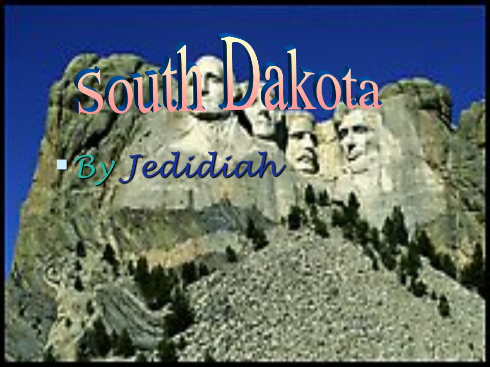 The South Dakota flag features the state seal surrounded by a golden blazing sun in a field of sky blue.
