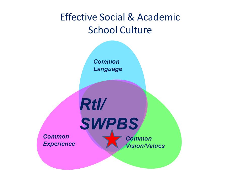 Effective Social & Academic School Culture Common Vision/Values Common Language Common Experience RtI/ SWPBS