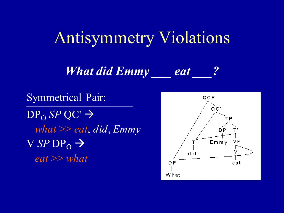 Antisymmetry Violations What did Emmy ___ eat ___.