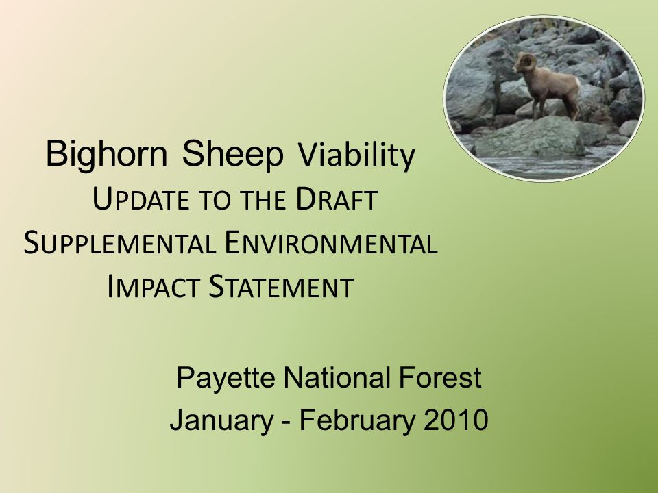Bighorn Sheep Viability U PDATE TO THE D RAFT S UPPLEMENTAL E NVIRONMENTAL I MPACT S TATEMENT Payette National Forest January - February 2010
