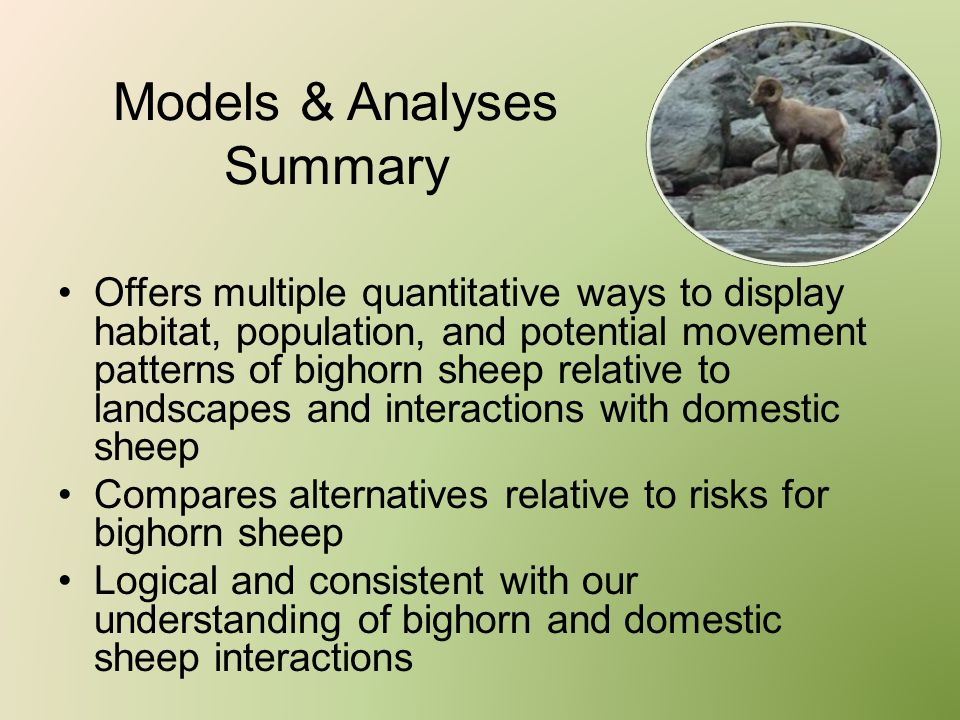 Models & Analyses Summary Offers multiple quantitative ways to display habitat, population, and potential movement patterns of bighorn sheep relative